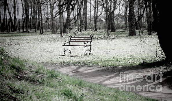 Lonely Bench by Yury Bashkin
