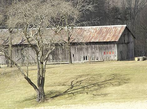 Long Barn by John Williams