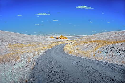 Long Road in Palouse by Jon Glaser