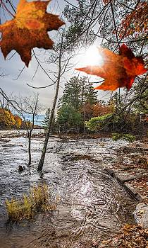 Robert Hayes - Looking Downriver On The Saco