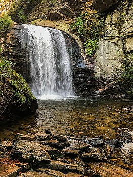 Looking Glass Falls H by Kelly Kennon