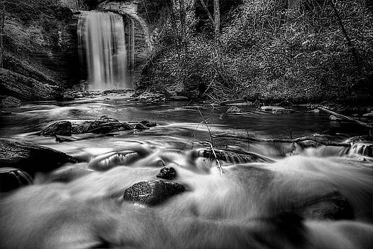 Looking Glass Falls In Black And White by Carol Montoya