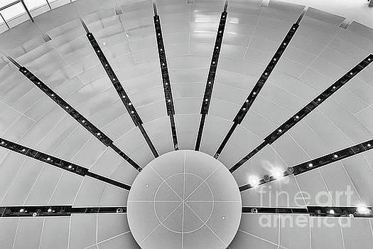 Looking Up In Atlanta by Tom Gari Gallery-Three-Photography