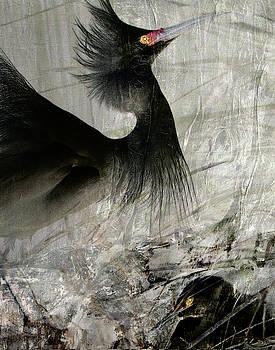Looking Up by Jeanne Gadol
