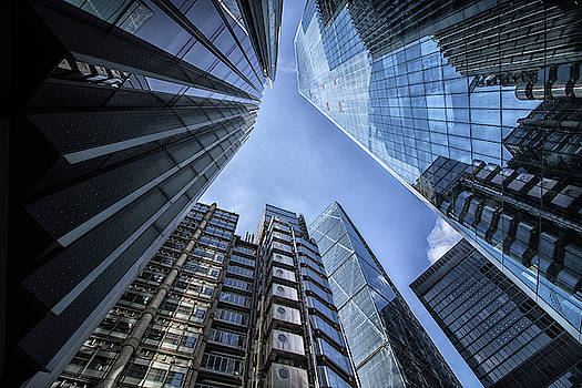 Looking Up by Martin Newman