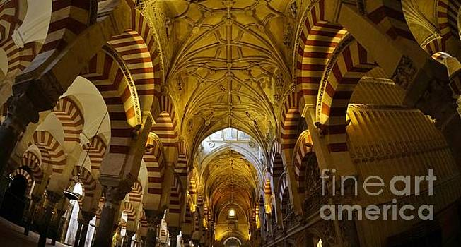 Looking UP within the Cordoba Mezquita by Tony Lee