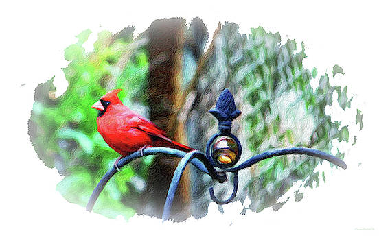 Lookout Duty Cardinal by Diane Lindon Coy