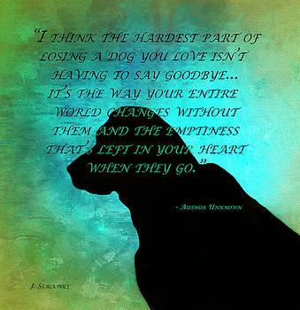 Losing A Dog by Jennifer Stackpole
