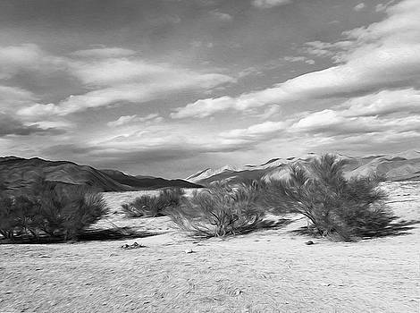 Lost In The High Desert by Joe Schofield