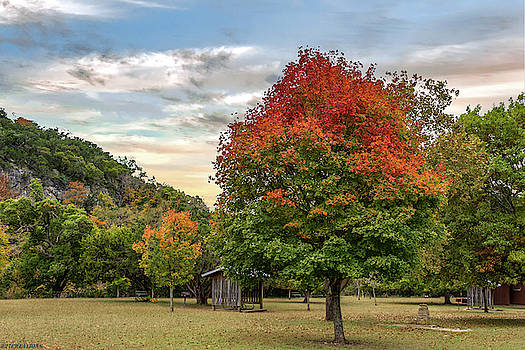 Lost Maples State Park by Gaylon Yancy