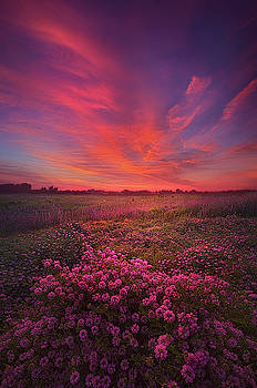 Love Is All There Is by Phil Koch