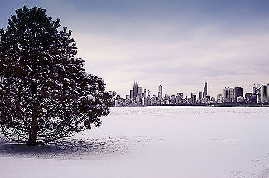 Lovely Winter Chicago by Milena Ilieva