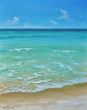 Low Tide by Alan Zawacki