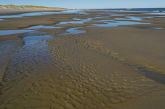Low Tide II by Mike O'Shell