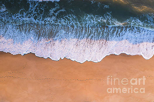 Steps In The Sand  by Michael Ver Sprill