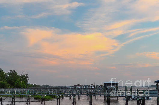 Lowcountry Docks by Dale Powell