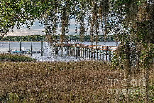 Lowcountry Paradise - Salt Life by Dale Powell