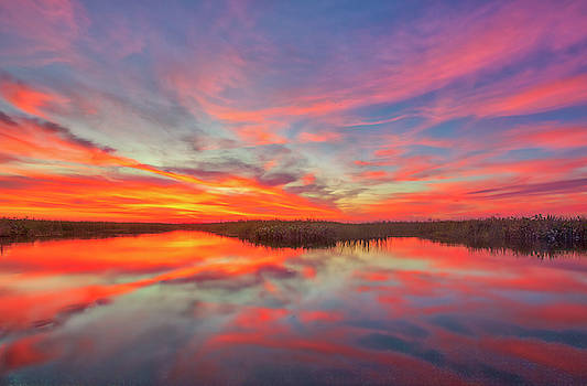 Loxahatchee National Wildlife Refuge by Juergen Roth