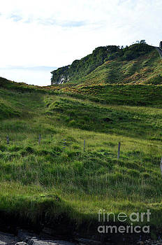 Lush Green Sea Cliffs with Lots of Grass by DejaVu Designs
