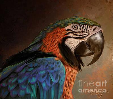 Macaw by Tara Richardson