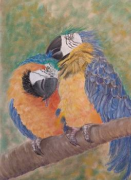 Macaws and her young by Joan Mansson