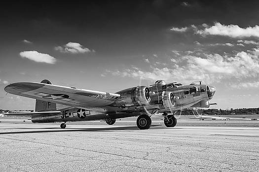 Madras Maiden in Black and White by Chris Buff
