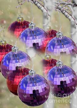 Magical Christmas by Susan Warren