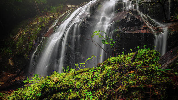 Magical Mystical Mossy Waterfall by Mike Koenig