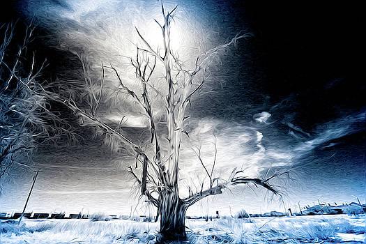 Magical Tree by Cyndi Hardy