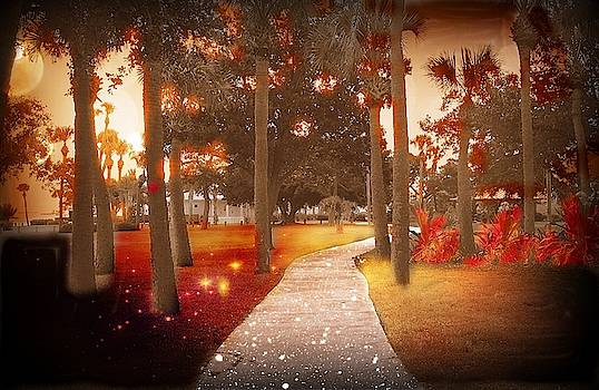Magical Walk by Yvonne Sewell