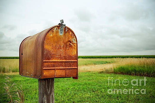 Mailbox  by Iryna Liveoak