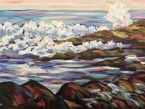 Maine Crashing Waves by Richard Nowak