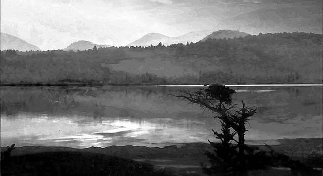 Mike Breau - Maine Reflections-Black and White
