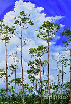 Maingot Forest by Paola Correa de Albury