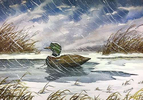 Mallards Decoy in Snow by Raymond Edmonds