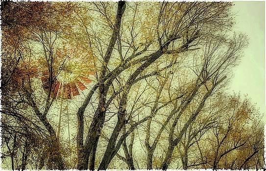 Natural Abstract Photography - Man Made Hidden