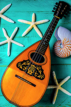 Mandolin And White Starfish by Garry Gay