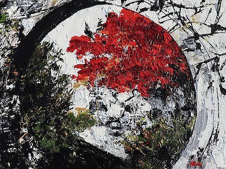 Maple Tree 2 201908 Bonsai Penjing Museum National Arboretum by Alyse Radenovic