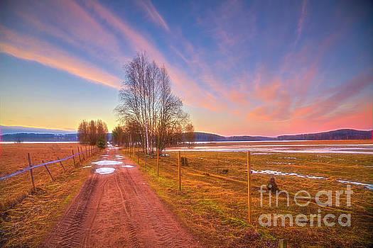 March morning by Veikko Suikkanen