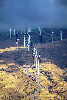 March of the Windmills by Dave Matchett