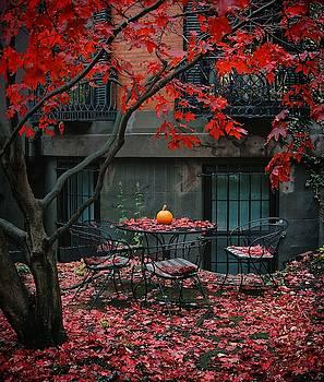 Marlborough maple fall by Brian McWilliams
