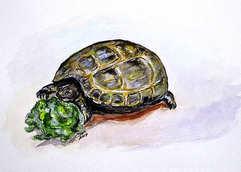Marshal The Turtle by Clyde J Kell