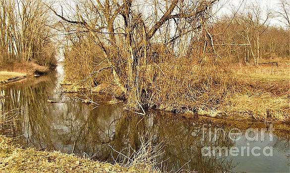 Marshland Canal         Spring         Indiana by Rory Cubel