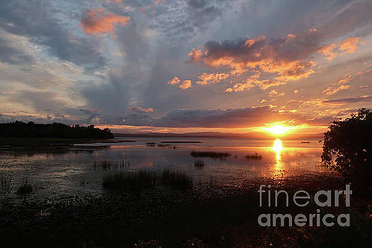 Felipe Adan Lerma - Marshland Sunset With Reflections The Island Line Trail Vermont