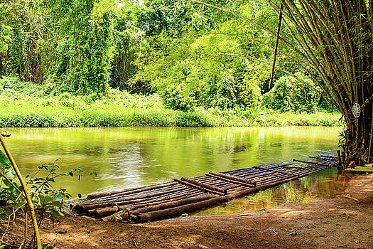 Martha Brae River Bamboo Rafting by Debbie Ann Powell