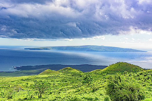 Maui Paradise by Jim Thompson