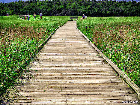 Boardwalk at McCormack's Beach Provincial Park by Ken Morris