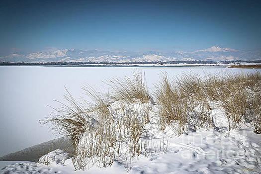 McIntosh Lake Longs Peak by Veronica Batterson