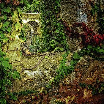 Medieval Garden by Su Buehler
