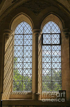Patricia Hofmeester - Medieval windows at lacock abbey